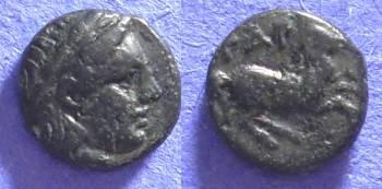 Ancient Coins - Gargara Troas - AE8 Circa 400 BC