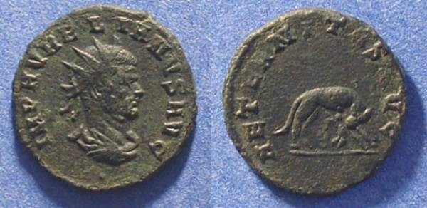 Ancient Coins - Aurelian 270-275 Billon Antoninianus - She wolf reverse