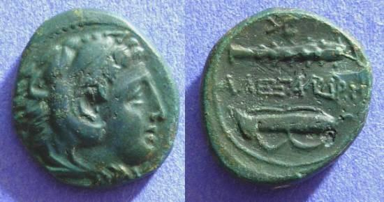 Ancient Coins - Macedonian Kingdom - Alexander III - AE17 Circa 300 BC