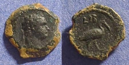 Ancient Coins - Domitian 81-96AD Dichalkon of Alexandria - Ibis reverse