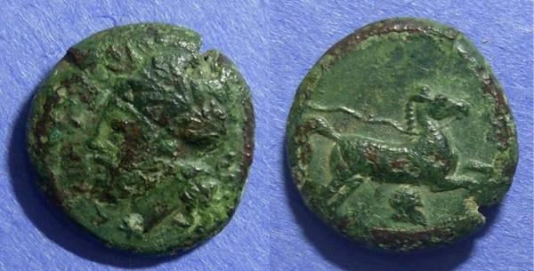 Ancient Coins - Entella Sicily, Campanian Mercenaries 342-339 BC, AE18