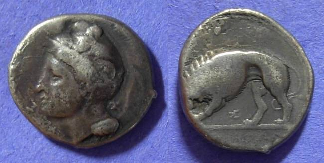 Ancient Coins - Velia - Lucania Stater 344-300 BC