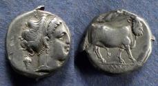 Ancient Coins - Campania, Neapolis 320-300 BC, Nomos