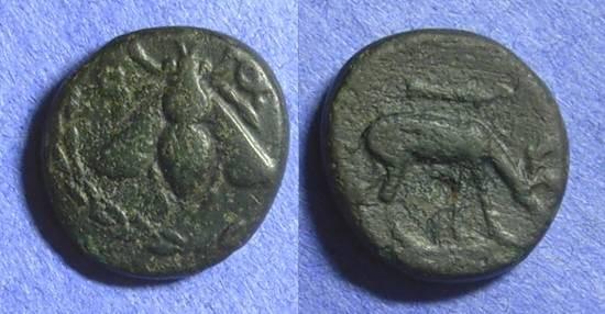 Ancient Coins - Epheos Ionia AE17 280-258BC