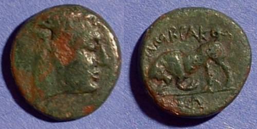 Ancient Coins - Ambrakia Epeiros - AE18