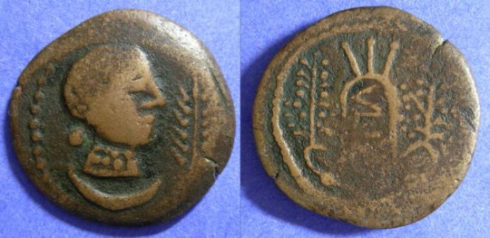 Ancient Coins - Ulia Spain - AE29 2nd Century BC
