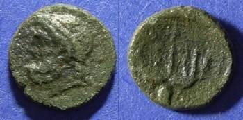 Ancient Coins - Syracuse Sicily, Roman rule Circa 200 BC, AE14