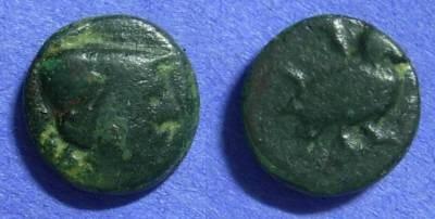 Ancient Coins - Cyclades Amorgos, AE15  Circa 200 BC *Lindgren plate coin*