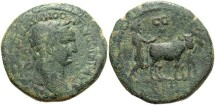 Ancient Coins - Phoenicia, Berytus. Trajan. A.D. 98-117. Æ 25 mm. Good Fine, green patina, light porosity.