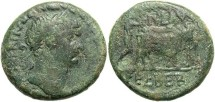 Ancient Coins - Phoenicia, Berytus. Trajan. A.D. 98-117. Æ. Fine, green patina.