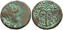Ancient Coins - Phoenicia, Tyre. Pseudo-autonomous issue. Late first century A.D. Æ. Civic year 203 (A.D. 77/8). VF, brown patina with earthen green highlights.