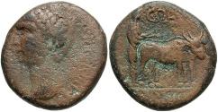 Ancient Coins - Phoenicia, Berytus. Claudius. A.D. 41-54. Æ. Good Fine, brown patina.