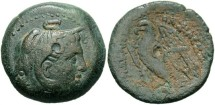 Ancient Coins - Ptolemaic Kingdom. Ptolemy II Philadelphos. 285-246 B.C. Æ. Alexandria, ca. 261/0-246 B.C. VF, green patina.