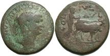 Ancient Coins - Phoenicia, Berytus. Trajan. A.D. 98-117. Æ. Fine, brown patina.