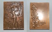 World Coins - ae medal from LECHEVREL 68/50 mm femme nue  rare art nouveau  bronze medal