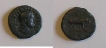 Ancient Coins - Trajan - Quadrans - Boar