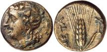 Ancient Coins -  Lucania, Metapontion, c.300-250 BC, AE15,