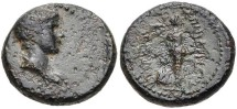 Ancient Coins - BRITANNICUS, AD 41-55, son of Claudius. Ionia, Smyrna. AE (17mm, 4.44 g, 12h). Philistos and Eikadios, magistrates. Struck circa AD 50-54. Bareheaded and draped bust right / Nike a