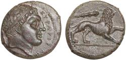 Ancient Coins - Sicily. Syracuse: AE litra – Herakles/Lion – EF; fine style with excellent detail