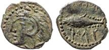 Ancient Coins - Spain, Gades (Gadir): AE quarter unit (quater calco, AE17) – Melqart/Tunny – Scarce, aEF