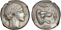 Ancient Coins - Sicily. Leontini: AR tetradrachm – Apollo/Lion's head – EF