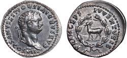 Ancient Coins - Domitian as Caesar under Titus AR denarius – Goat in wreath – EF; attractive toning; large flan