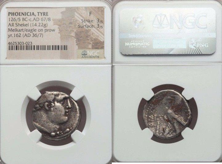 Ancient Coins - PHOENICIA. Tyre. Ca. 126/5 BC-AD 67/8. AR shekel (14.22 gm). NGC Fine 3/5 - 3/5. Dated CY 162 (AD 36/7).