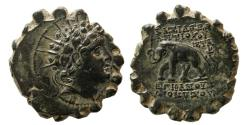 Ancient Coins - SELEUKID KINGS, Antiochos VI Dionysos. 144-142 BC. Æ Serrate. Lovely strike.