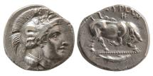 Ancient Coins - LUCANIA, Thourioi. 400-350 BC. AR Stater. Lovely strike. From the Volteia Collection.