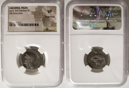 Ancient Coins - LUCANIA, Velia. early 3rd century BC.  Silver Didrachm. NGC VF. Fine style.