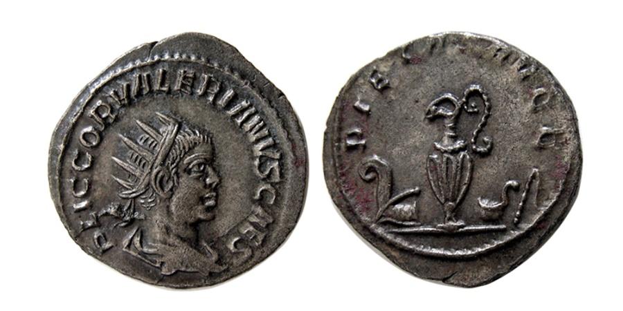 Ancient Coins - ROMAN EMPIRE. Valerian II, Caesar AD 256–258. AR Antoninianus.