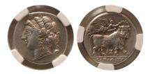Ancient Coins - CAMPANIA. Neapolis. Ca. 275-250 BC. Silver didrachm.  NGC XF. Lovely strike.