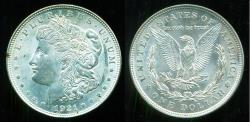 Us Coins - USA: 1921 Morgan Silver Dollar Mint State!