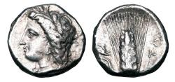 Ancient Coins - LUCANIA, Metapontion.  330-290 BC.  AR Stater.