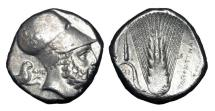 Ancient Coins - LUCANIA, Metapontion.  350-330 BC.  AR Distater.