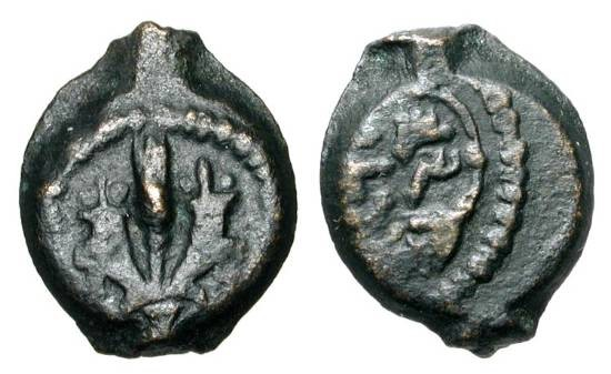 Ancient Coins - JUDAEA.  Mattathias Antigonos, 40-37 BC.  Æ Prutah (1.85 gm).  Two cornucopiae with ear of barley / Inscription in wreath.  Hen.483.  VF, dark brown patina.