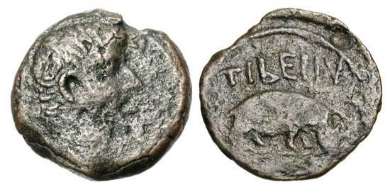 Ancient Coins - ROMAN EGYPT.  Tiberius, 14-37 AD.  Æ Obol (3.38 gm), year 6 (19/0 AD). Bare head / Hippopotamus standing.  RPC.5087.  Dat.103.  VF, brown patina.  Very Rare.