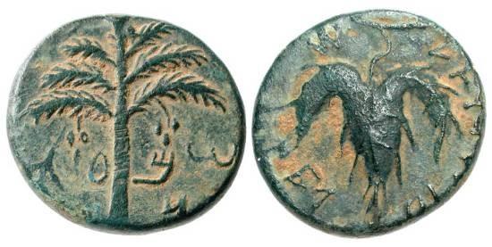 Ancient Coins - ANCIENT JUDAEA.  Bar Kochba Revolt, 132-135 AD.  Æ23 (10.27 gm), yr. 2.  Palm tree / Vine leaf.  Mild.82-93v (O7/R-).  Hendin.708.   aXF, green patina.   Choice.