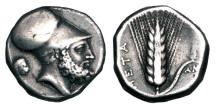 Ancient Coins - LUCANIA, Metapontion.  c. 340-300 BC.  AR Stater.