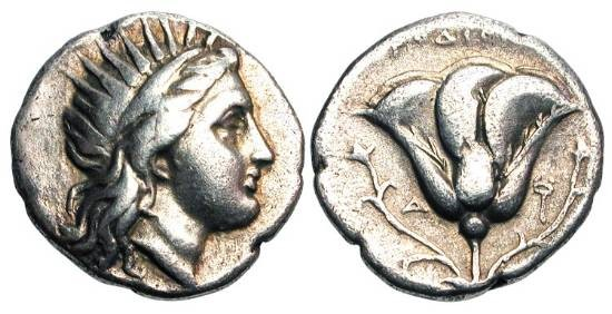 Ancient Coins - CARIAN ISLANDS, Rhodes. 304-265 BC.  AR Didrachm.  Radiate head of Helios right / Rose and two buds.  Ashton.166.  SNG.Cop.734.  Toned VF+.  Rare.