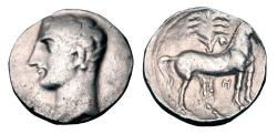 Ancient Coins - CARTHAGO NOVA.  Hannibal,  218-206 BC.  AR Shekel.  Choice Hannibal portrait.