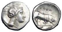 Ancient Coins - LUCANIA, Thourioi, 350-300 BC.  AR Distater.