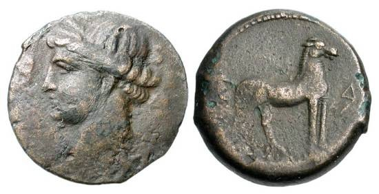 Ancient Coins - ZEUGITANIA, Carthage.  264-241 BC.  Æ24 (7.41 gm) of Sardinia.  Head of Tanit / Horse standing facing right.  SNG.Cop.207v.  VF, dark brown patina.