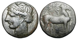 Ancient Coins - ZEUGITANIA, Carthage.  264-241 BC.  Billon 1 1/2 Shekel (10.84 gm).  Head of Tanit wearing grain-wreath / Horse standing before palm-tree.  SNG.Cop.190.  Toned VF.  Rare.