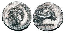 Ancient Coins - ROMAN REPUBLIC.  M. Lucilius Rufus, 101 BC.  AR Denarius.