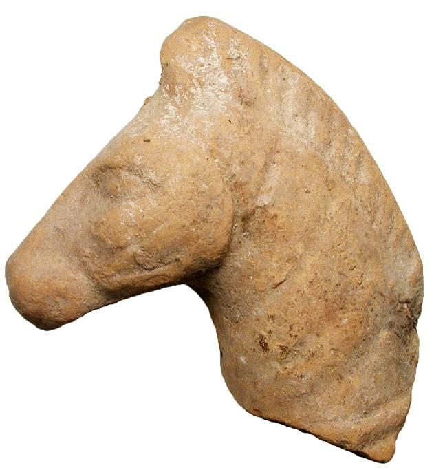 Ancient Coins - Terracotta Horse Head.  Greece, III-I Century BC.  Brown terracotta horse head.  3 tall.  Broken from a large statue, neck uneven.