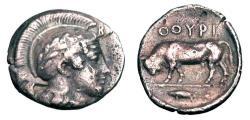 Ancient Coins - LUCANIA, Thouroi.  443-400  BC.  AR Diobol.