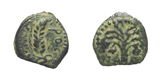 Ancient Coins - JUDAEA, Procurators.  Coponius, 6-9 AD.  Æ Prutah (1.81 gm) of 6.  Ear of barley / Palm tree.  Hen.635.   VF,  earthy black patina.