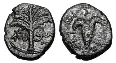 Ancient Coins - ANCIENT JUDAEA.  Second Revolt, Bar Kochba, 132-135 AD.  Æ19.