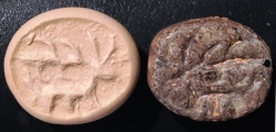 Ancient Coins - An Iron Age IIa Scaraboid Brown Stone Seal, 10th-9th century BCE